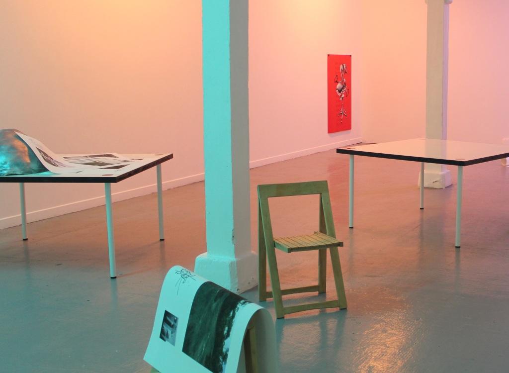 Laëtitia Badaut Haussmann, Zoo Galerie, Nantes, 2015