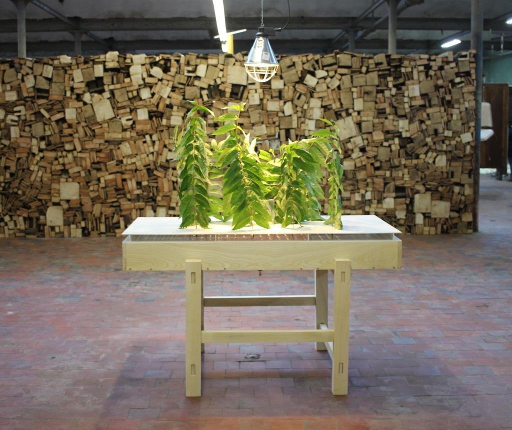 Le shed,art contemporain, Rouen