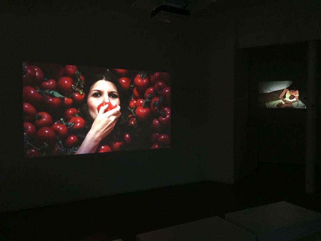 Romina-de-novellis-expo