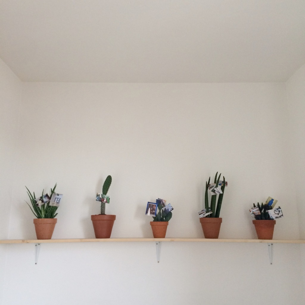 shelves-lia-rochas-paris